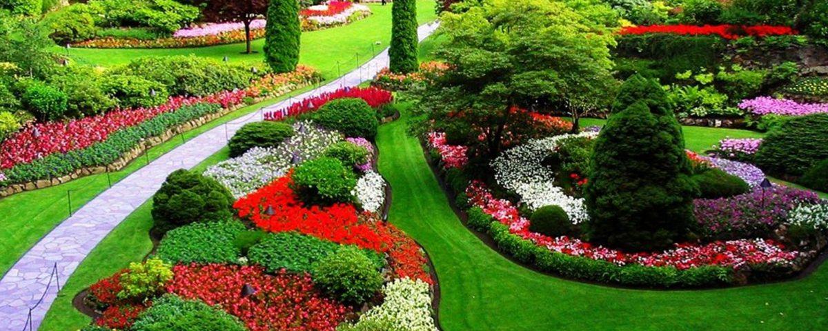 empresa de jardinería